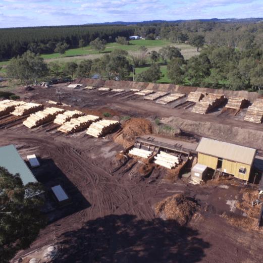 SApine South Australia